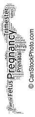 Word cloud of Pregnancy - Beautiful word cloud of pregnancy...