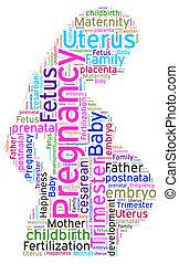 Word cloud of Pregnancy - Beautiful word cloud of pregnancy...