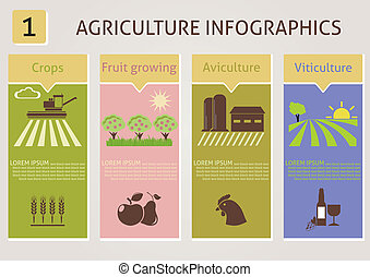 Agriculture infographics Vector for you design