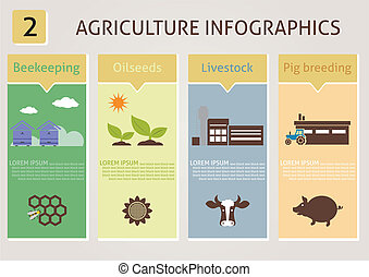 Agriculture infographics. Vector for you design