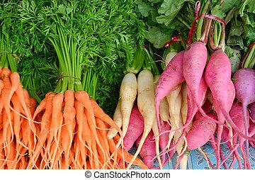bebé, zanahoria, rosa, nabo