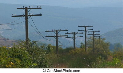 Old power line.