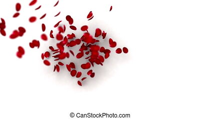 Heart of petals - Rose petals build up the heart shape