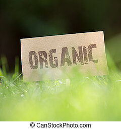 Close-up of an Organic sign in green grass - Close-up low...