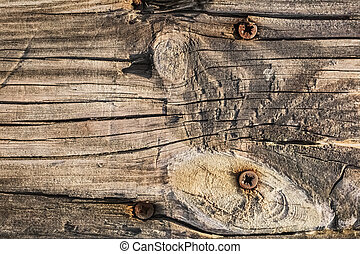 Old Knotted Cracked Plank With Rusty Phillips Screws...