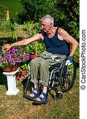 sílla de ruedas, jardinería