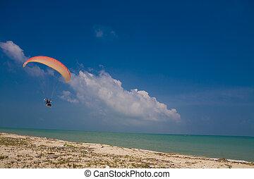 voando, paramotor, sob, azul, céu