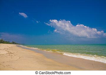 mar, praia, azul, céu, Areia, sol, Luz dia