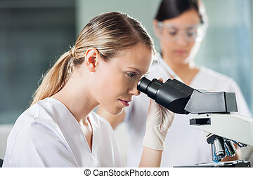 Female Technician Looking Into Microscope - Young female...