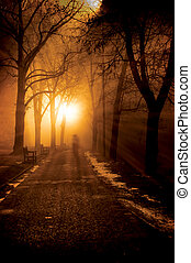 Foggy lonely night - Lonely foggy path in a park at night
