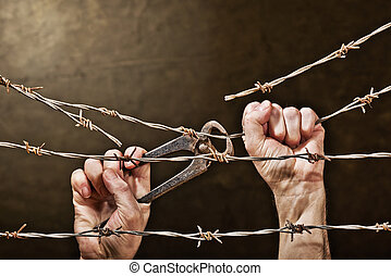 barbed wire with hands - old rusty barbed wire with hand on...