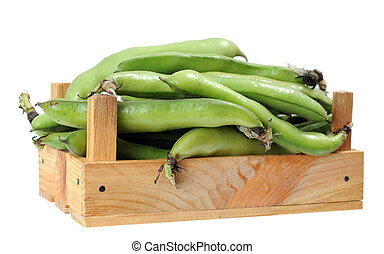 fava beans in crate isolated on white