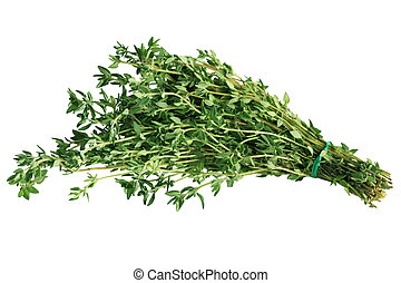 Thyme Bundle - Bundle of fresh thyme isolated on white...