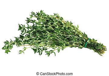 Thyme Bundle - Bundle of fresh thyme isolated on white...