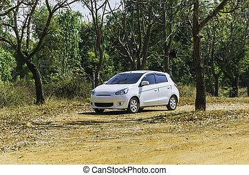 white car on roadside