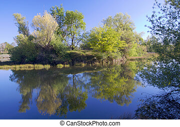 American River Pond with Reflection 2 - American River...