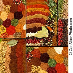 Spices and Herbs Collage - Healthy organic spices and herbs...