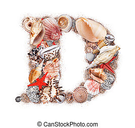 Letter D made of seashell isolated on white background
