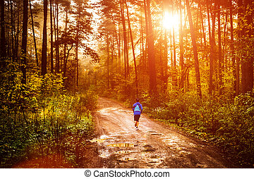 Morning jogger - Jogger running a muddy path in autumn...