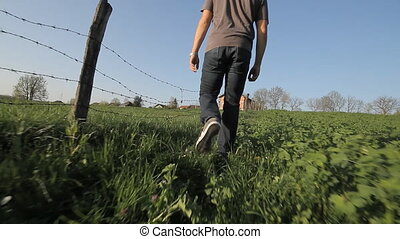 man walking trough grass field