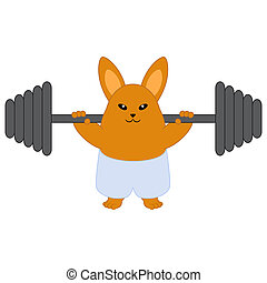 Strong bunny holding a barbell. Isolated on white