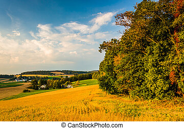 Evening view of rolling hills and farm fields in rural York...