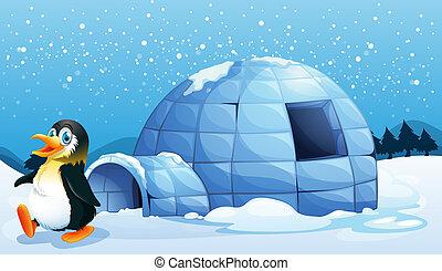 A penguin near the igloo - Illustration of a penguin near...