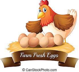 Fresh eggs from the farm - Illustration of the fresh eggs...