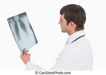 Concentrated male doctor looking at x-ray picture of lungs