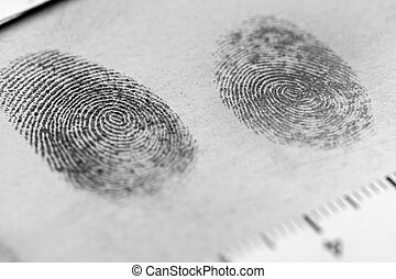 Fingerprint - View of a fingerprint revealed by printing