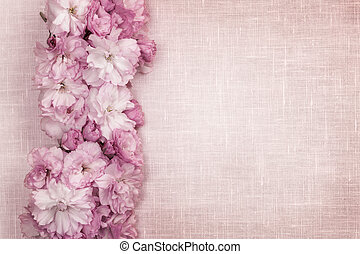 Cherry blossoms border on pink linen - Border of pink cherry...