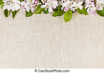 Linen background with apple blossoms - Natural linen...
