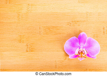lilac  orchid on bamboo wooden  background