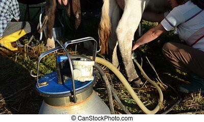 milking machine pump milk - special milking equipment pump...