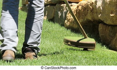 Lawn string trimmer - Gardening Activity - Lawn string...