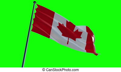 Canada Flag. greenscreen and alpha