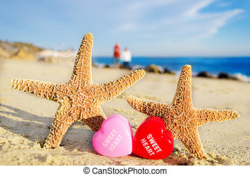 Starfishes with hearts on the sandy beach