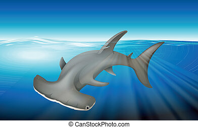 Hammerhead Shark - Illustration of a hammerhead shark