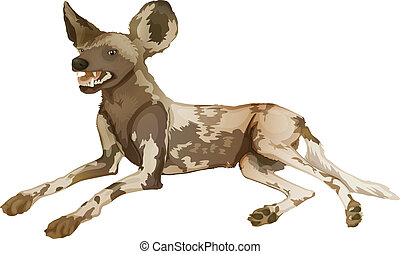 African wild dog - Illustration of an African wild dog...