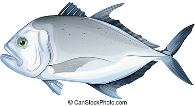 Giant trevally - Illustration of a giant trevally Caranx...