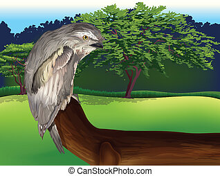 Wild Bird - Illustration of a wild bird