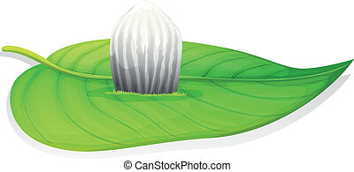 Monarch butterfly - Danaus plexippus - egg stage -...