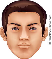 Human face - Illustration of a human face feature