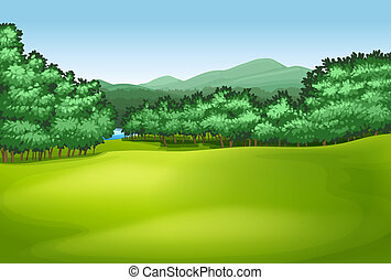 Trees - Illustration showing the trees