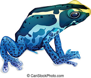 Poison dart frog - Illustration of a poison dart frog...