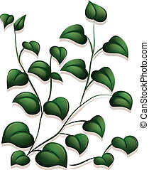 Leaves - Illustration of the leaves on a white background