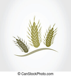 Wheat2 - Three ears of wheat A vector illustration