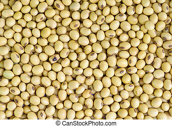 soy beans . - Closeup of soy beans  background.