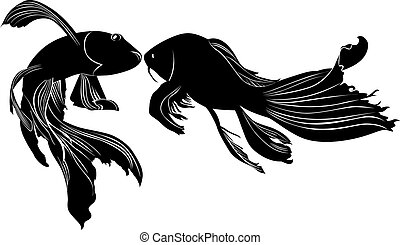 goldfish carp vector