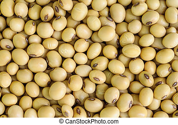 soy bean. - Closeup of soy beans  background.